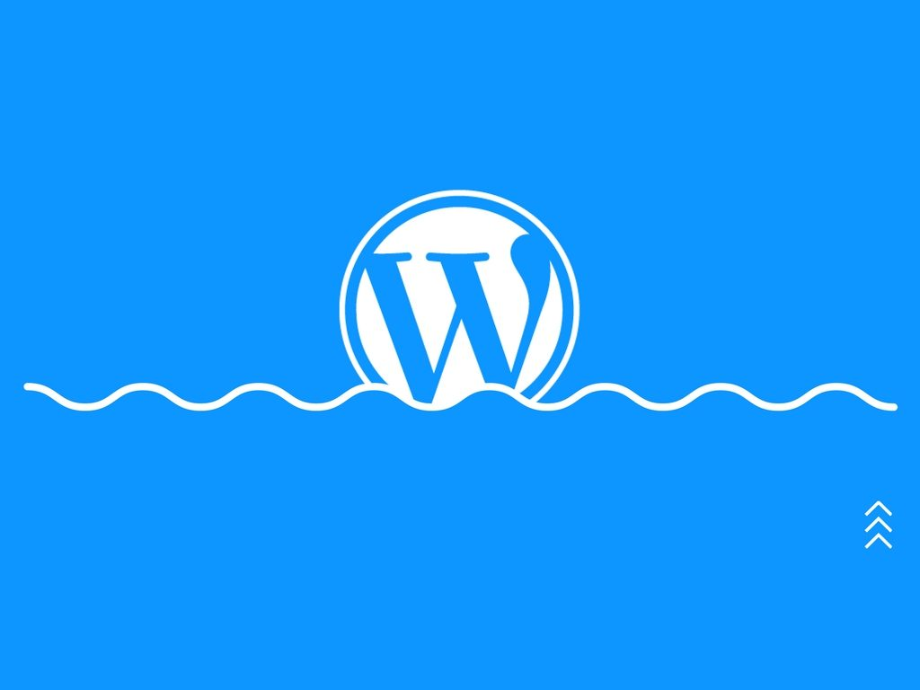 Enter WordPress
