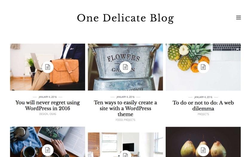 Delicate – By Binder PRO WordPress Theme